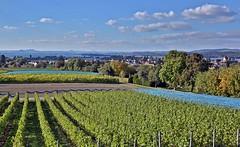Hegaublick (Norbert Kaiser) Tags: reichenau klosterinselreichenau hochwart landwirtschaft aussicht hegau