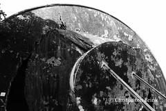 Watertower: casualty of the war (10b travelling / Carsten ten Brink) Tags: 10btravelling 2015 asia asie asien carstentenbrink ceylon iptcbasic jaffna kilinochchi ltte lankan southasia srilanka srilankan tamiltiger bw blackwhite blackandwhite cmtbbw destroyed fallen monochrome north northern tenbrink war watertower