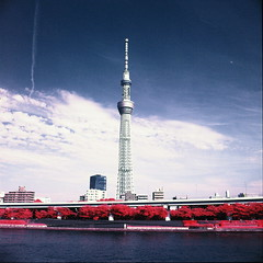 Sky tree tower, Tokyo (santisss) Tags: hasselblad 503 cx distagon 60mm cf 35 aerochrome infrared film expired 2011 orange filter 099 bw sky tree tower tokyo japan