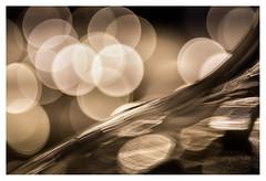 Opening the bubbly season (leo.roos) Tags: mono monochrome glass glas reflection weerspiegeling bottle fles karaf decanter a7s fujinon5522 fuji fujica m42 darosa leoroos