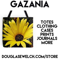 Buy this Gazania Tote and much more at http://ift.tt/1hfrEWq #flowers #garden #plants #gazania #products #totes #bags #clothing #technology #arts #crafts (dewelch) Tags: ifttt instagram buy this gazania tote much more douglasewelchcomstore flowers garden plants products totes bags clothing technology arts crafts