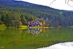 In the nature (EAO72) Tags: reflection lake woods cottage autumm yansma gl orman turkey trkiye natural doa sonbahar