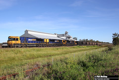 6 October 2016 TT02 TT07 TT128 NB998 loaded coal Baan Baa (RailWA) Tags: railwa philmelling nsw 2016 tt02 tt07 tt128 nb998 loaded coal baan baa