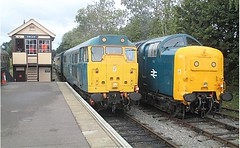 EE locos 31438 and 55019 at Ongar, EOR Epping Ongar Railway 08.10.16 (Trevor Bruford) Tags: eor epping ongar heritage railway br blue train diesel locomotive deltic d9019 9019 55019 royal highland fusilier napier ee english electric dps preservation society d5557 31139 31438 31538