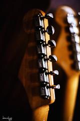 Vintage Headstocks (Daniel Y. Go) Tags: fuji fujixpro2 xpro2 philippines music guitar fender headstock stratocaster jazzmaster