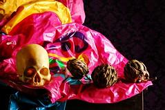Still Life with Pink Polyvinyl Chloride (Studio d'Xavier) Tags: stilllifewithpinkpolyvinylchloride pvc skull artichokes pink strobist