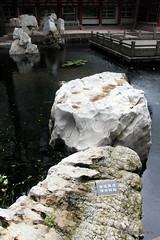 池沼の壁紙プレビュー
