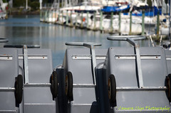 Marina Carts (Camera Clips) Tags: city sky water yachts masts harbourbridge carts ponsonby westhaven aucklandcity westhavenmarina skytowerflags