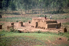 Making Mud Bricks, Aug 1986, Burundi img413 (Hart Walter) Tags: tourism coffee cattle rice tea goats sunflower sisal camels sugarcane deforestation desertification tef africanlanduse baobabdestruction