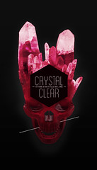 Crystal Clear (Bart De Keyzer (3rd Floor)) Tags: pink color art illustration point typography skull design graphicdesign crystal line clear frame horror sureal 3rdfloor hectagon bartdekeyzer