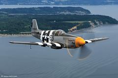 "P-51B ""Impatient Virgin"" Mustang (xnir) Tags: aviation north american mustang everett paine nir p51 p51b xnir virgin"" ""impatient"