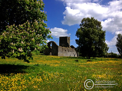 Abbey Meadow . (johndugganfoto) Tags: kilkenny callan abbeymeadow irishabbeys johndugganfoto ei8frb