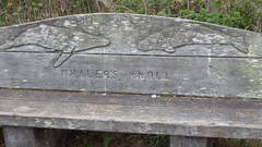 Whaler's Knoll bench (rhyang) Tags: hiking centralcaliforniacoast pointlobosstatereserve