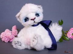 Tess-13-2013 (Anna T.) Tags: white cat teddy ooak collection teddysbyannatide