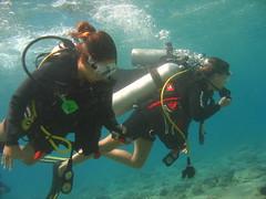 IMG_0535 (acmt2001) Tags: sea fish coral underwater  redsea scuba diving reef eilat aquasport