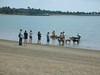 8-5-2012CastleIsland023