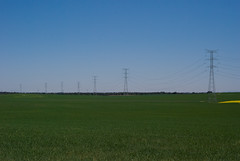 32 (kosmekosme) Tags: sky green nature field grass view electricity poles