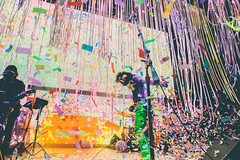 FLAMING LIPS BY POONEH GHANA