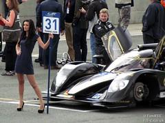 Lotus mechanic checking track temperatures... (Tim R-T-C) Tags: racetrack lotus lola silverstone motorracing motorsport pitcrew autosport carracing gridgirl onthegrid sportscarracing lemansprototype sportsprototype worldendurancechampionship fiawec kodewa lolab1280