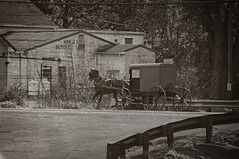 Amish Buggy (Charlemagne OP) Tags: horse buggy amish bw strasburg lancasterco pennsylvania