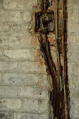 ex_DSC7630 (DianeBerky19) Tags: nikondf ellisisland rust texture brick chipped