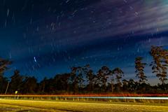 StarTrailPointRd1-2 (Photography By Tara Gowen) Tags: startrails night blue moonlight nsw australia nikon lights longexposure lightstream trees road carlights