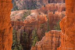 Red glow (Pol/S) Tags: brycecanyon rock landscape utah usa