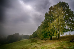 Foggy valley - Tal bedeckt mit Nebel (ralfkai41) Tags: wiese trees landscape landschaft nature mist outdoor nebel fog natur bume hdr