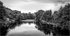 The River Tees . (wayman2011) Tags: fujifilmx70 lightroom wayman2011 bwlandscapes mono castles rivers rivertees trees reflections pennines dales teesdale barnardcastle countydurham uk