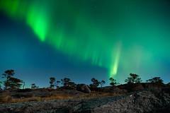 Light show (dan.kristiansen) Tags: auroraborealis aurora northernlights nordlys night natt skorpo skorpefjellet kvinnherad norge norway autumn hst nightphotography landscape landskap