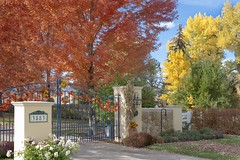 Autumn castles (Rocky Pix) Tags: autumncastles autumn color fall red maple cottonwood prairie castle locked gate feudal estate autumncomestocotton rockies boulder county colorado rockypix rocky mountain pix wmichelkiteley f16 1320thsec 36mm 2470mmf28g nikkor normalzoom monopod
