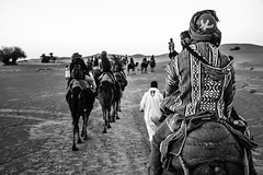 Saara (Ivan S. Almeida) Tags: outdoor daylight desert saara morocco camels berbers bw blackandwhite black white sand