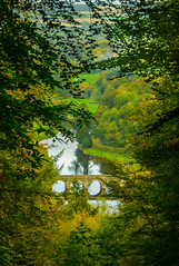 Autumn Colors (Fergal Gleeson) Tags: landscape nature scenic outdoor outdoors woodland trees green color fall autumn frame bridge river water woods foliage leaves light seasons kilkenny ireland ngc