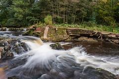 Full flow (poach01) Tags: riverside landscape movement trees rocks longexposure hdr river