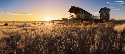 A Kalahari dream