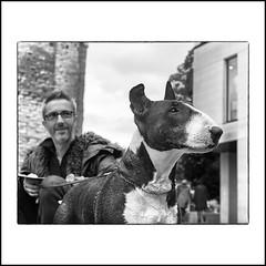... (jean76_58) Tags: jean7658 pentax portrait streetportrait street photography dog chien regard blackwhite bw noirblanc nb monochrome monotone bullterrier pet animal animals animaux personnes noir et blan