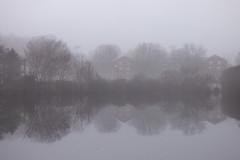 Foggy Morn (Alemap.1) Tags: landscape lake fog mist reflection nature symmetrical