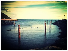 Safe Haven (amandalumb) Tags: harbour shy