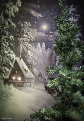 Cottage in the woods (judy dean) Tags: judydean 2016 sonya6000 adventcalendarday2 dream whitechristmas christmastree cottage woods snow stars