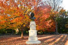 beethoven (greenelent) Tags: beethoven fall autumn leaves prospectpark brooklyn nyc orange 365 photoaday statue