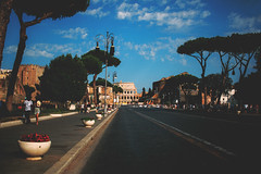 194/366 (abnormalbeauty.) Tags: rome street foriimperiali via trees sky skyporn happy colosseum coliseum blue green perspective vanishing italy roma