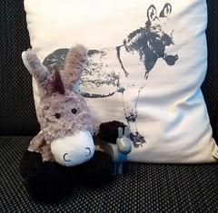 Eselige Gre! (mellane.karin) Tags: esel donkey plschtier plschesel plushanimal
