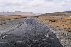 MAQ_0397 (MolviDSLR) Tags: deosair national park skardu gilgit baltistan northern areas pakistan brown bear wild life scenery landscape