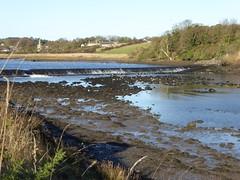 Weir. Beal Bank (Granpic) Tags: northumberland river rivercoquet bealbank weir