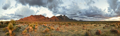 Baylor Pass Panorama (BongoInc) Tags: newmexico chihuahuandesert organmountains panorama landscape