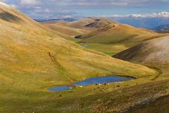 Gran-Sasso-12-ottobre-2016-(34) (Giancarlo Vetrone) Tags: gransasso abruzzo abruzzoaquilano montagna mountain lago lake mucche cows allaperto allariaaperta