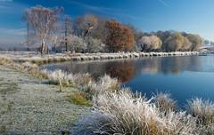 Frozen Lake (Alan Habbick Photography.) Tags: penponds richmondpark winterscene frozedground