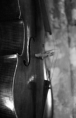 Shape of Violin (Vincentli*) Tags: monochrome nikon iso400 delta violin ilford f25 105mm pcautio