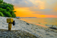 Chasing Sunset with Danbo! (Jake Wang) Tags: sunset sea sun beach clouds landscape golden sand singapore hour punggol tamron danbo 1750mm danboard