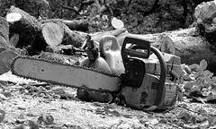 CUTTING EDGE TECHNOLOGY (simongavin83) Tags: blackandwhite modern dangerous technology engine chainsaw logging sharp cutting petrol tool lumberjack fuel powertool treecutting odc buzzsaw husqvarna 2stroke powersaw ourdailychallenge nikond5100 combican petroldriven huqvarna355xp